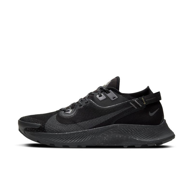 Nike Pegasus Trail 2 GORE-TEX CU2016-001