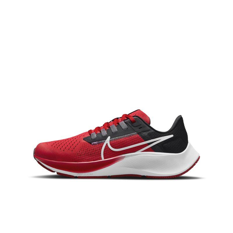 Nike Air Zoom Pegasus 38 CZ4178-608 01