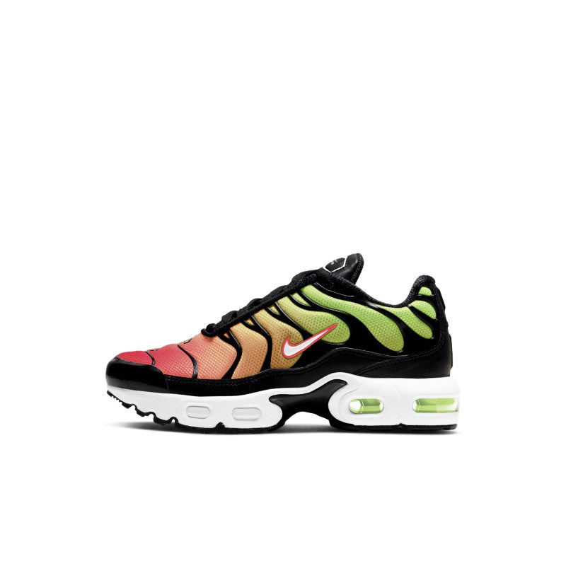 Nike Air Max Plus CD0610-010 01