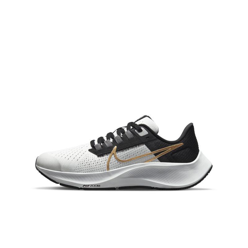 Nike Air Zoom Pegasus 38 CZ4178-007 01