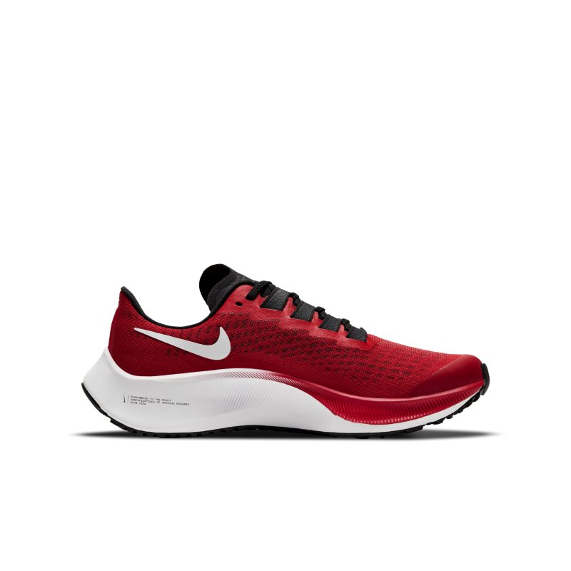 Nike Air Zoom Pegasus 37 CJ2099-600 03