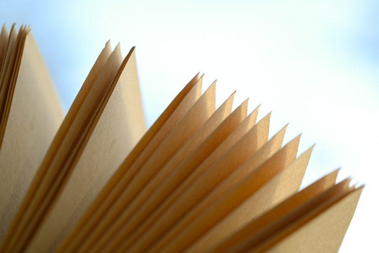 novel ideas to start writing