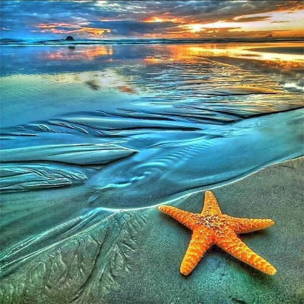 Playa Estrella de Mar