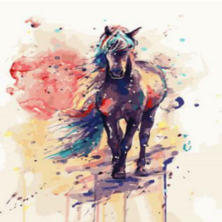 Caballo - Painting by Numbers