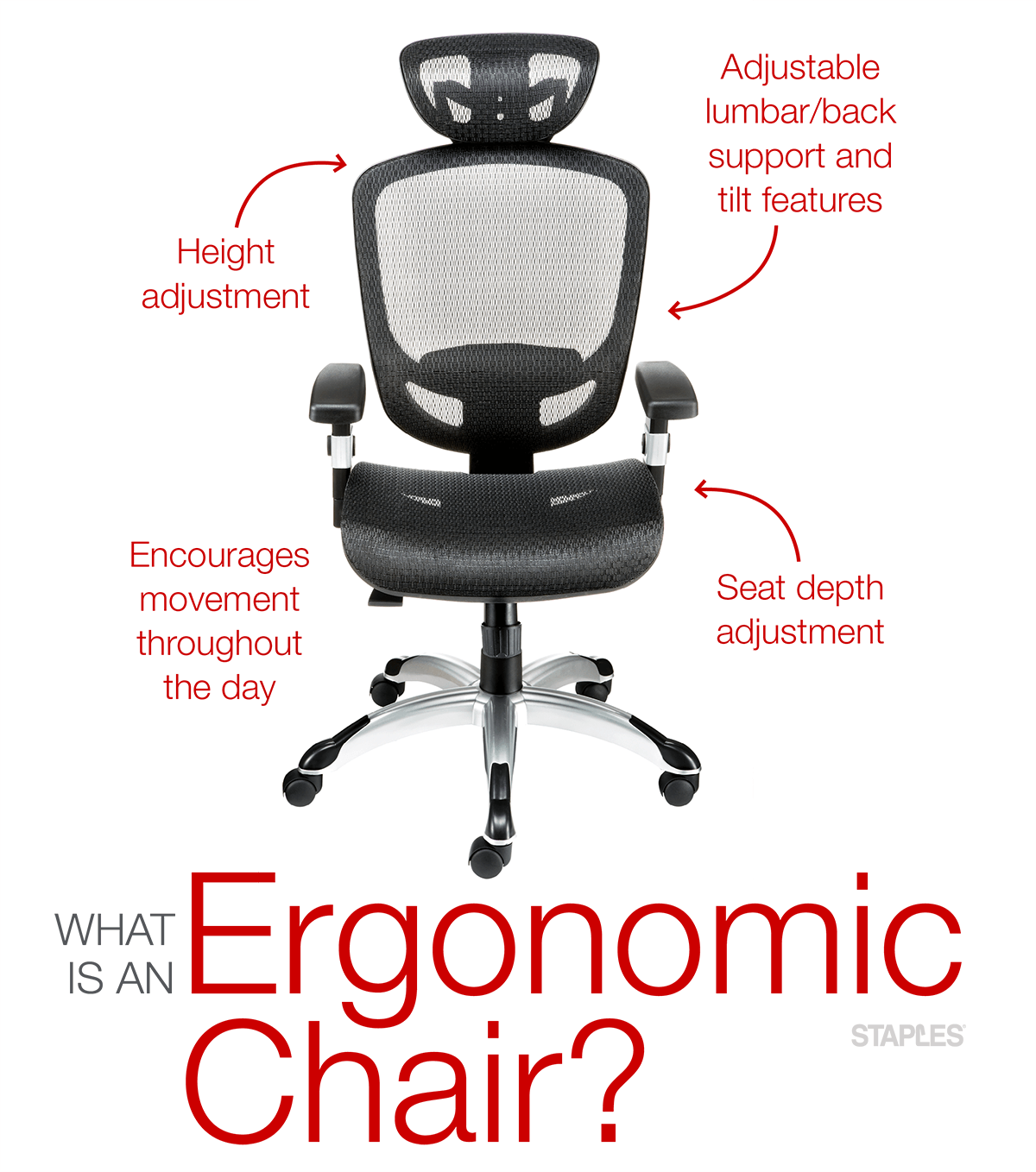 Choosing The Best Ergonomic Office Chairs