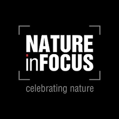Natures In Focus