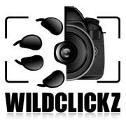Wildclickz