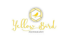 Yellow Bird Photography