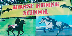 G.P. Horse  Ride Training