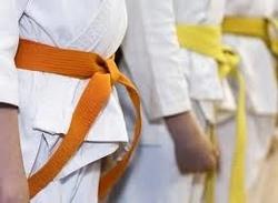 Karate Vikas Manch