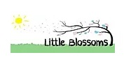Little Blossoms Daycare Preschool