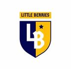 Little Berries Preschool & Daycare