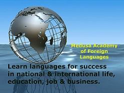 Medusa Academy Of Foreign Language