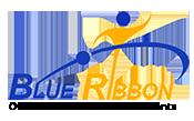 Blueribbon Overseas Educational Consultants