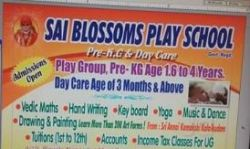 Sai Blossoms Play School