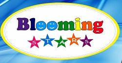 Blooming Stars Preschool
