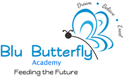 Blu Butterfly Academy And Day Care Centre