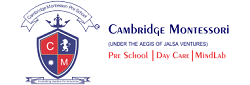 Cambridge Montessori Preschool And Daycare, Tngo Colony
