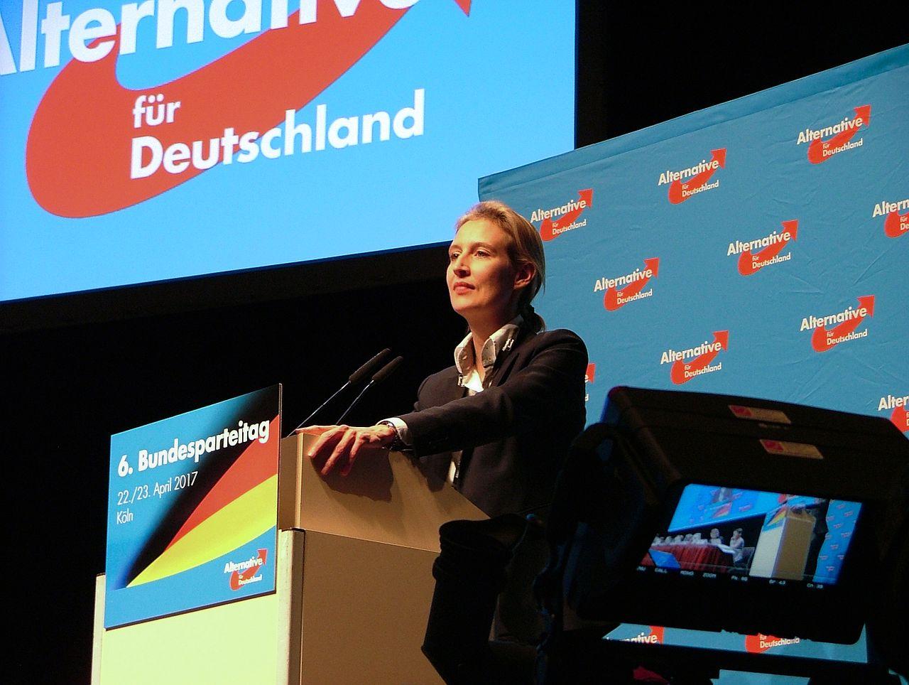 德國另類選擇黨眾議院領導人威德爾(圖/Olaf Kosinsky / kosinsky.eu)