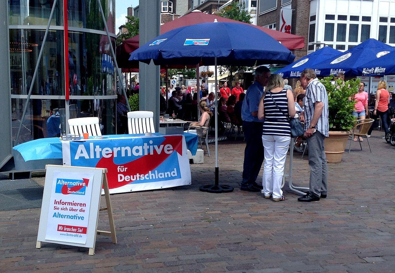 德國東部地方大選出爐,極右派民調竄升(圖/Ziko van Dijk/CC BY-SA 3.0)