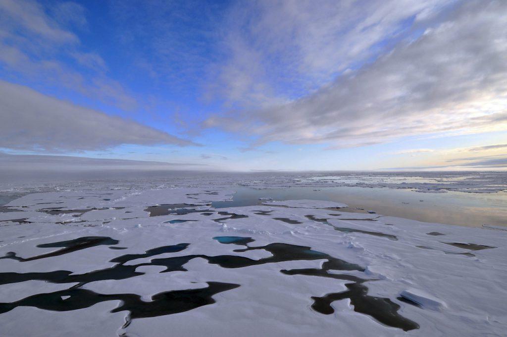 因應氣候變遷,北冰洋持續捕魚禁令(圖/ U.S. Geological Survey/公共網域)