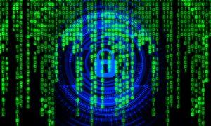 虎批羊皮,罕見諜吃諜情形,俄羅斯駭客組織行為曝光(圖/pixabay)