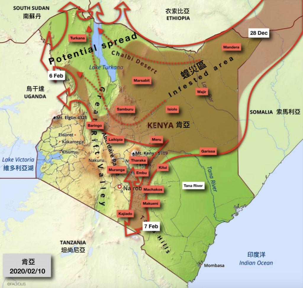 肯亞蝗災圖(圖/聯合國農糧署)
