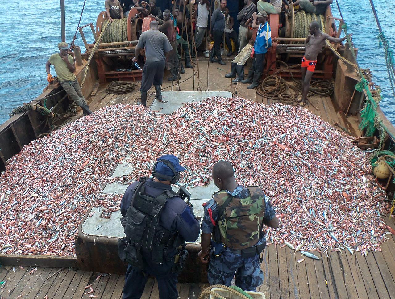 打擊非法捕撈、漁業(圖/U.S. Navy photo by Kwabena Akuamoah-Boateng:Released/公共領域)