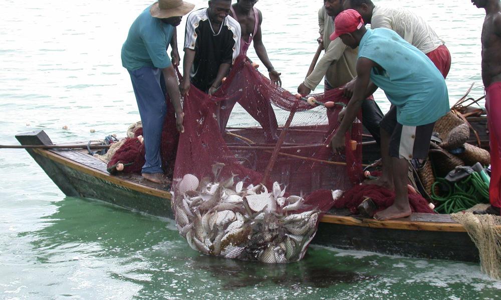 打擊非法捕撈、漁業(圖/M-Rwimo/CC BY-SA 4.0)