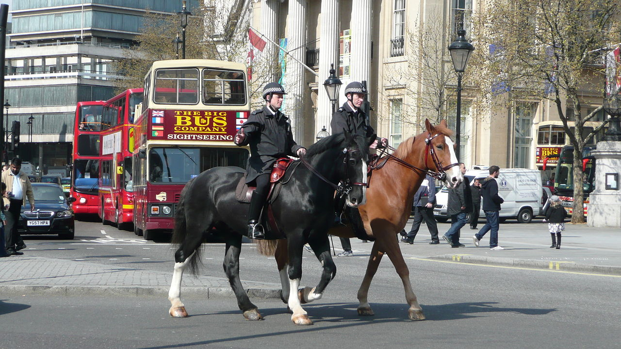 倫敦騎警(圖/Arriva436/CC BY-SA 3.0)