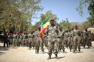 1280px-2014_01_22_Ethiopia_Welcome_Ceremony(圖/AMISOM Public Information/CC0 1.0)