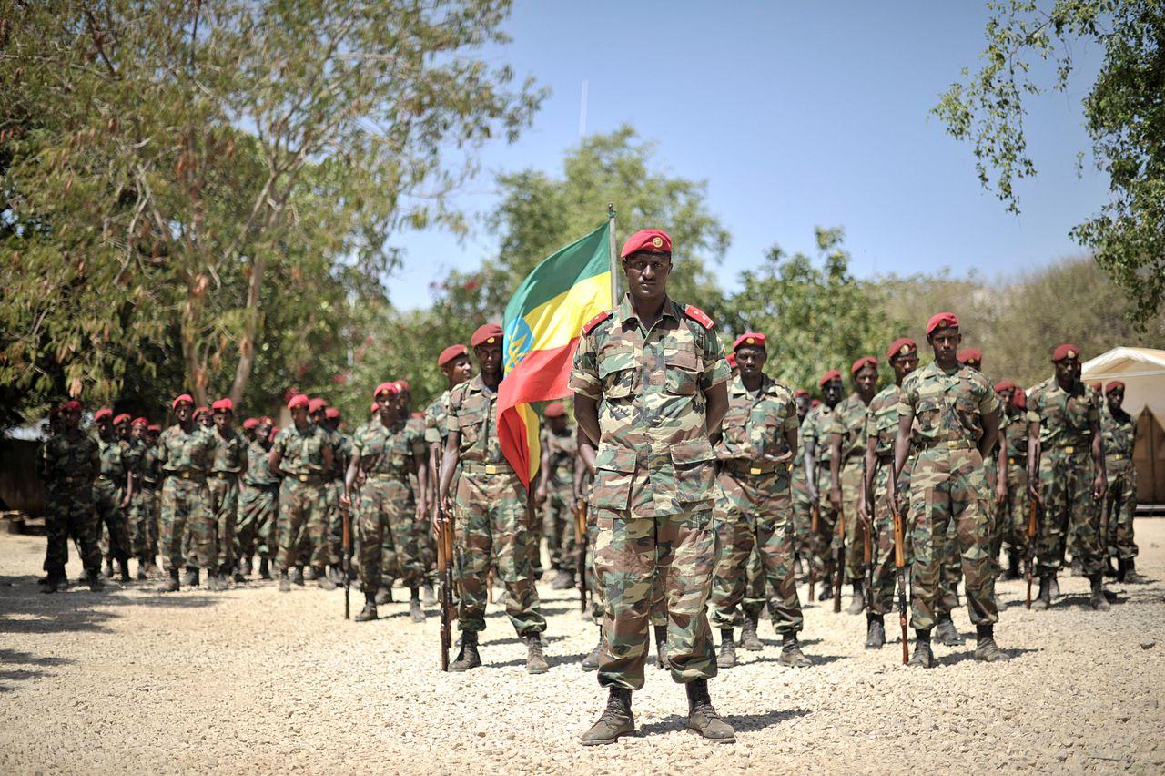 1280px-2014_01_22_Ethiopia_Welcome_Ceremony(圖/AMISOM Public Information/CC0 1.0)