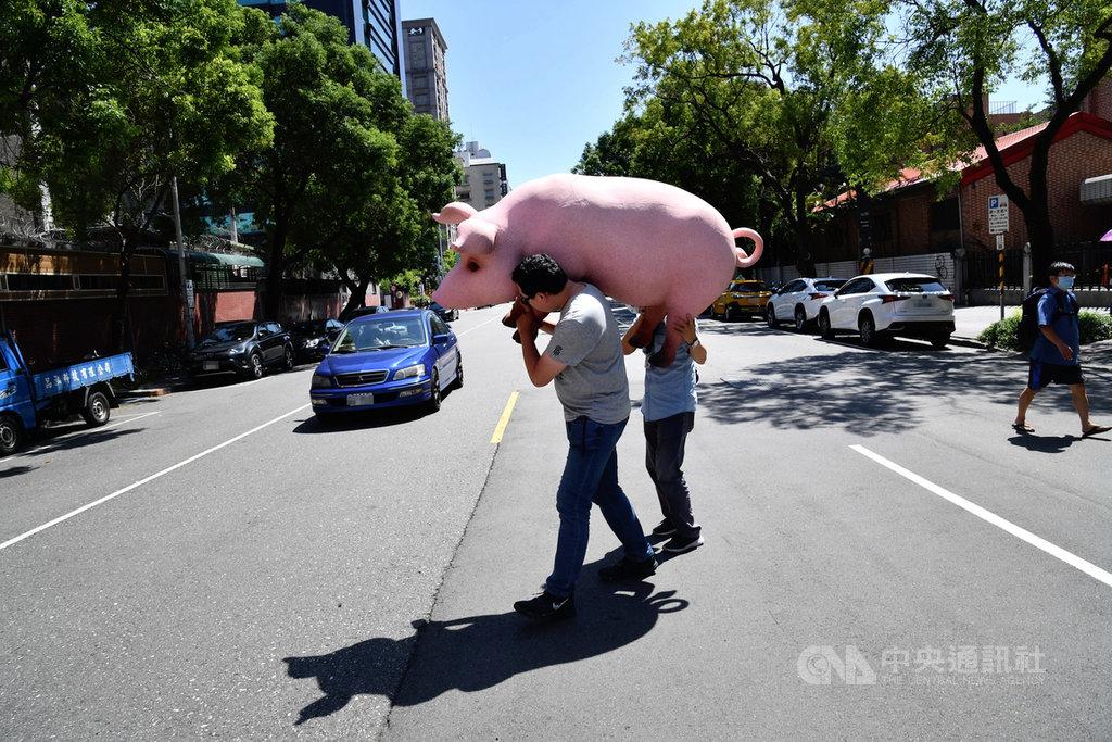 國民黨反對含萊克多巴胺美國豬肉進口發起公投,23日到中選會送出第一階段連署書,黨工將道具豬從中選會抬回立法院。