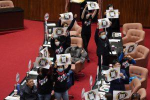今(24)立院表決美豬相關行政命令與法案。圖/中央社。