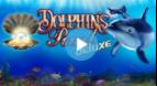 Novomatic Dolphin's Pearl