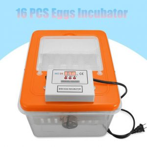 This is an image for this product - Generic 16 Eggs Automatic Turning Incubator Hatcher Digital Temperature Control 220V 30W - Jumia Kenya. This product is available for purchase from Jumia Kenya and is sold by BGvaritystore.