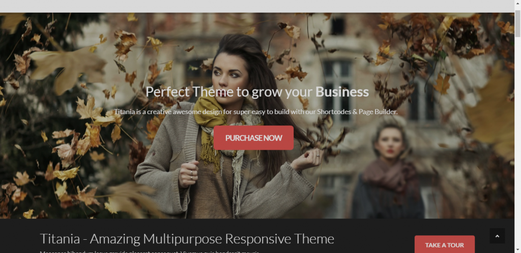 clothing store wordpress theme provided by titania