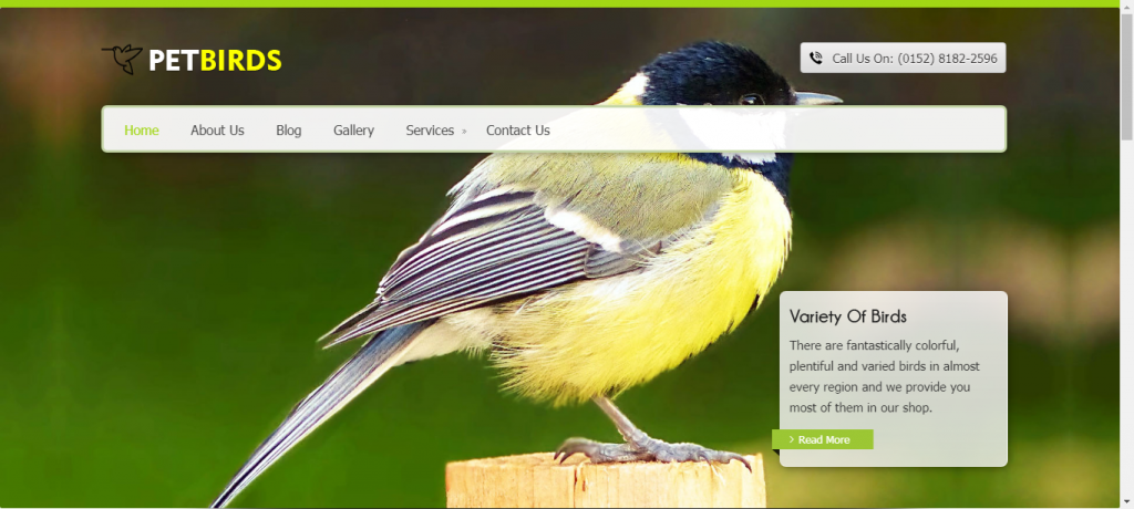 Petshop WordPress eCommerce theme for pet birds