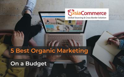 5 Best Organic Marketing Strategies on a Budget
