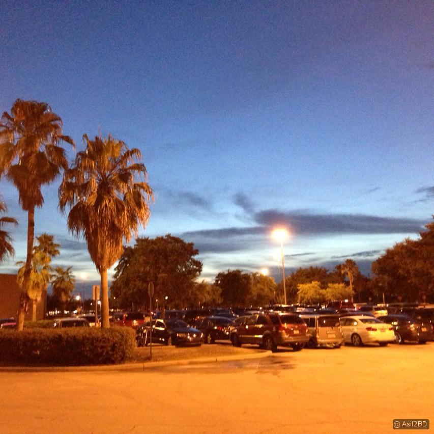 Evening at Orlando 4