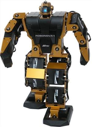 Friendly Humanoid Robot: RoboNova 8