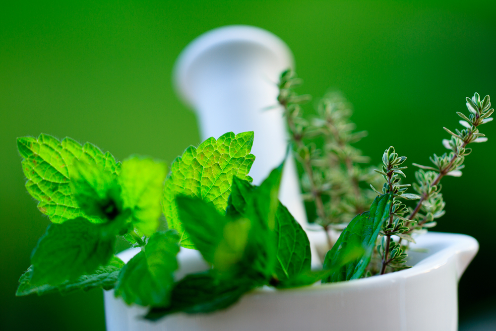 10 Simple Home Remedies with Mint (Pudina)