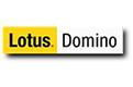 Lotus-domino | Backup Everything