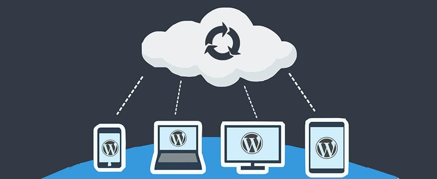 Why You Need WordPress Backup?