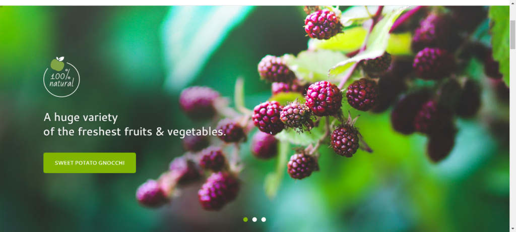 Organic WordPress Grocery theme