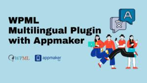 WPML plugin features