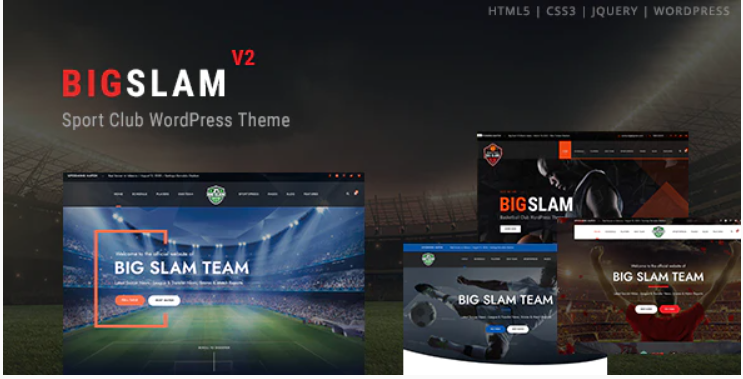 WordPress themes for sports