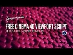 C4D Viewport Script