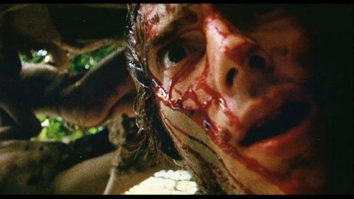 Cannibal holocaust (1980) dir. Ruggero Deodato