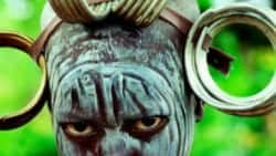 SAMSARA Theatrical Trailer